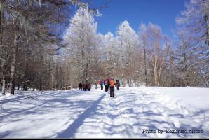 冬の櫛形山